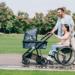cadeirante pode ter filhos?